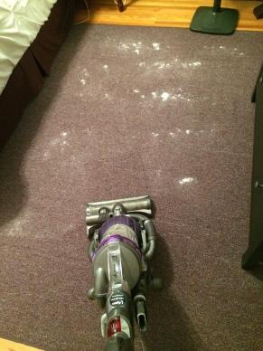 carpet freshener/purifier